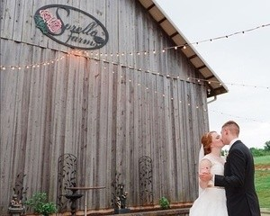 Sorella Farms multi color sign mounted onto the outside wall of a barn